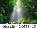 秋田県 亀田不動滝 24653415