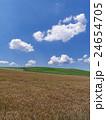 北海道 美瑛 麦畑の写真 24654705