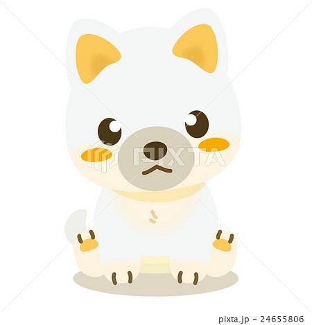いぬっこ倶楽部 柴犬(白) 24655806