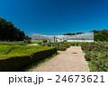 神代植物公園 大温室と夏空 24673621