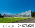 神代植物公園 大温室と芝生 24673625