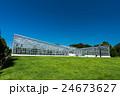 神代植物公園 大温室と芝生 左から 24673627