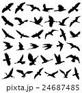 Flying Bird Vector 24687485