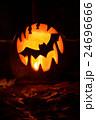 Bat on Halloween pumpkin 24696666