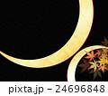 和柄 背景 紅葉のイラスト 24696848