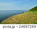 千枚田(石川県輪島)遠景 24697269