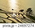 夕日と千枚田(石川県輪島) 24697274