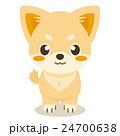 チワワ 犬 仔犬のイラスト 24700638