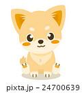 チワワ 犬 仔犬のイラスト 24700639