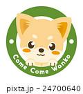 チワワ 犬 仔犬のイラスト 24700640