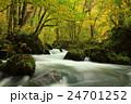 青森県十和田 紅葉の奥入瀬渓流 24701252