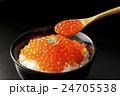 いくら 魚卵 筋子の写真 24705538