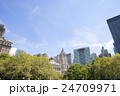マンハッタンの風景 ウォール街 24709971