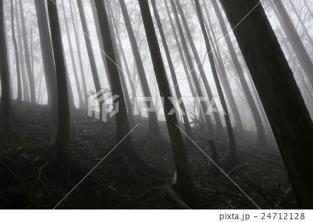 霧に包まれた登山道 24712128