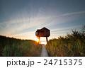 塔 太陽 日の写真 24715375