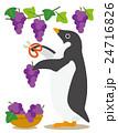 アデリーペンギン ペンギン ぶどう狩りのイラスト 24716826
