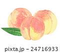 桃 水彩イラスト 24716933