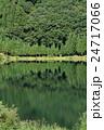 中綱湖 静寂の森 24717066