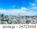 都心の高層ビル群と青空 24723049