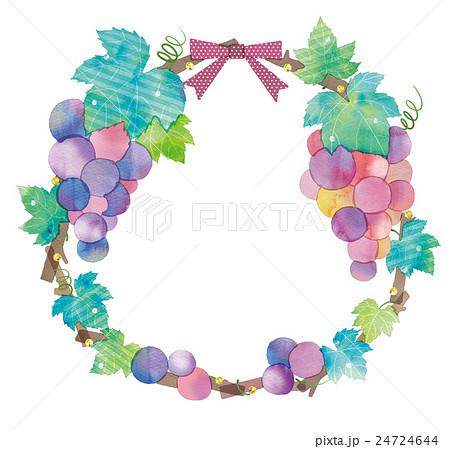 ぶどうのリースのイラストのイラスト素材 24724644 Pixta