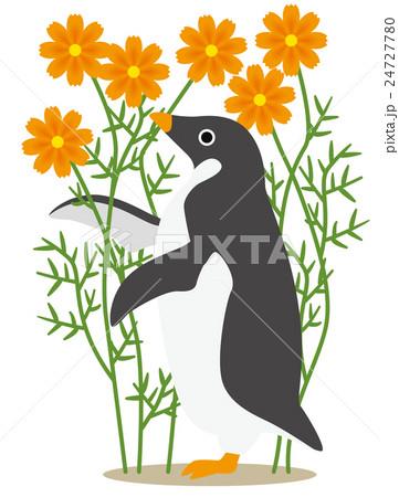 アデリーペンギン コスモス(黄) 24727780