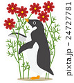 アデリーペンギン コスモス(赤) 24727781