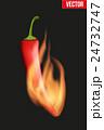 炎 胡椒 チリのイラスト 24732747