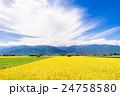 安曇野 田園風景 田園の写真 24758580