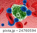 NK細胞とがん細胞、赤血球 24760594