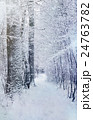 winter forest road among snow - xmas nature scene 24763782