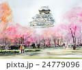 大阪城 春のスケッチ 城と桜 大阪 桜 24779096