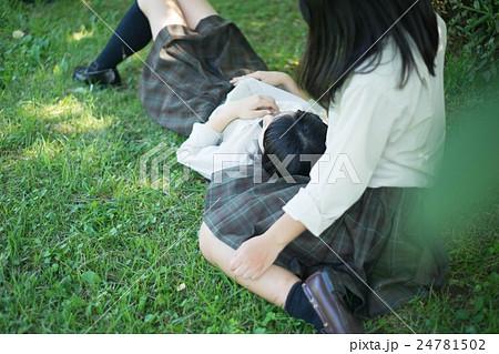 女子高生膝枕 24781502