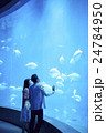 水族館デート 24784950