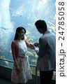 水族館デート 24785058