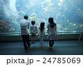 水族館 ファミリー 24785069