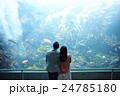 水族館デート 24785180
