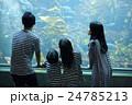 水族館 ファミリー 24785213