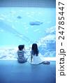 水族館 子ども 24785447