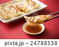餃子 24788538