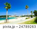 白良浜 海 海水浴の写真 24789263