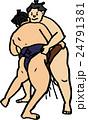 相撲 24791381