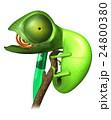 カメレオン 24800380