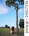 民族楽器、ダルブッカ/トーキングドラム 24817336