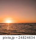 南国のイメージ 24824634