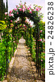 Arch with roses at garden of Generalife 24826238