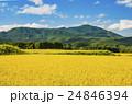 秋の田園風景 24846394