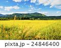 秋の田園風景 24846400