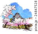 会津春の鶴ヶ城 24847528