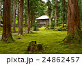 平泉寺白山神社 平泉寺 白山神社の写真 24862457