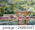 宮島のスケッチ 世界遺産 24863447